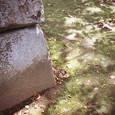 石垣と木漏れ日
